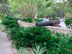 modern photo of cannon surrounded by lush plants